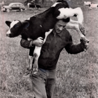 Max Wyssbrod of Browntown Carries a Calf After Tornado